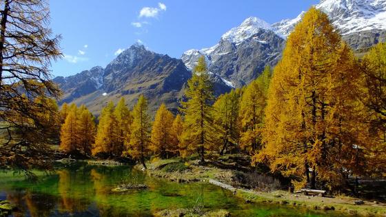 Per una riforma di sistema della Regione Autonoma Valle d'Aosta